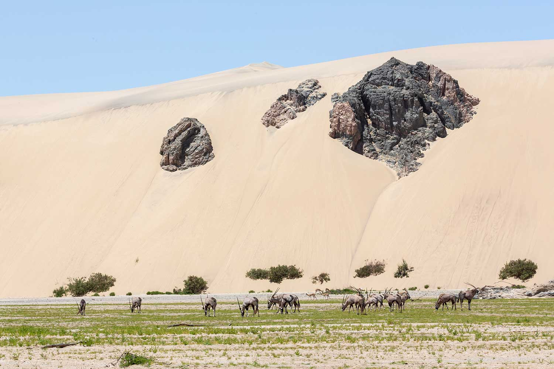 Hoarusib. Namibia