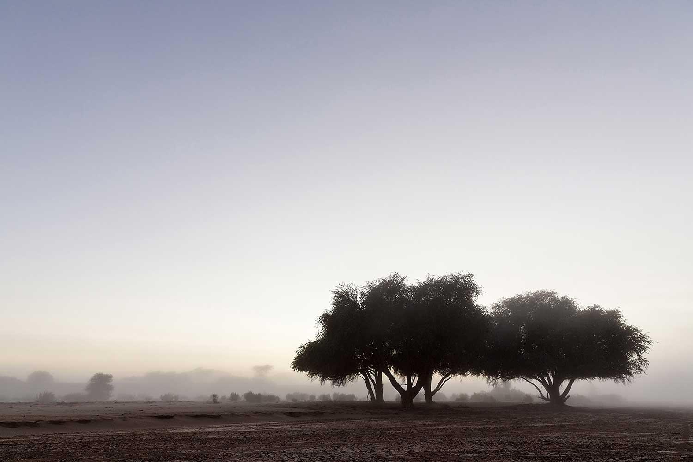 Hoanib. Namibia